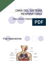 Anat Respiratorio Deisy