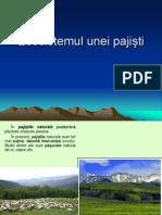 Ecosistemul unei pajisti