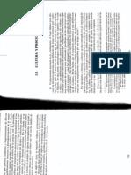 7. Taruffo 2009 Cultura y proceso en Jus Civ.pdf