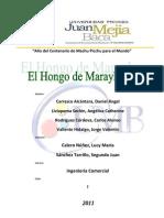 El Hongo de Marayhuaca