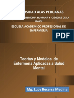 Teorias de Enfermeria UAP 2013