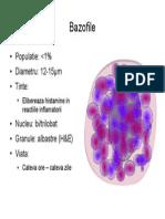79664150 Imunologie Suport Curs Draft v 0 4 23