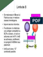 79664150 Imunologie Suport Curs Draft v 0 4 40