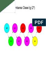 79664150 Imunologie Suport Curs Draft v 0 4 49