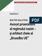 Radacinile naziste