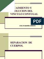 Decaimiento y Disolucion Del Vinculo Matrimonial - 2010