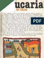 Revista Araucaria de Chile Nº 7
