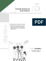 Texto 3 - Breve histórico da formação do docente