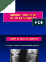 12- Tumor de Celulas Gigantes