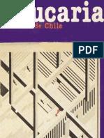 Revista Araucaria de Chile Nº  8