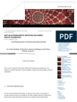 Strahlenfolter - TI - V2K - Electromagnetic Weapons and Human Rights at the 5th Symposium - Legalmerandering_wordpress_com_2012