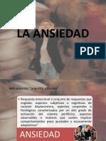 La Ansiedad y Toc