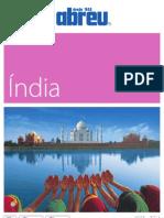 India_2013.pdf