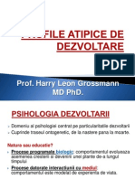 Profile Atipice de Dezvoltare1