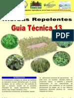 13 Guia en Produccion Plantas Repelentes