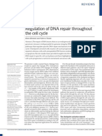 Regulation of DNA repair throughout  the cell cycle.pdf