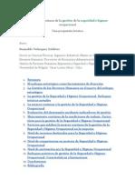 La_mejora_continua_de_la_gestión_de_la_seguridad_e_higiene_ocupacional.doc