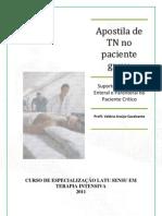 Apostila de Terapia Nutricional no paciente grave 2011 (2)