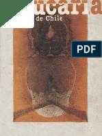 Revista Araucaria de Chile Nº 18