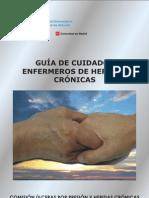 Guia Heridas Cronicas-Principe Asturias