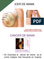 Cancer de Mama Expo