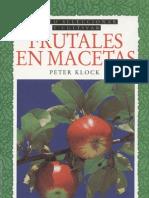 Cultivo de Frutales en Macetas