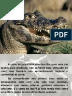 AULA Abate de Jacaré - E CAMARÃO.ppt