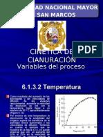 63295178 5 Cinetica y Variables Del Proceso de Cianuracion