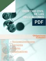 OBLIGACIONES_2008