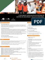 Diplomado Seguridad y Salud Ocupacional Online 2013 Peru