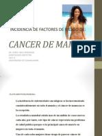Doc Cancer de Mama