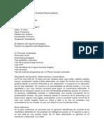 INTEGRACION DE ESTUDIOS PSICOLÓGICO