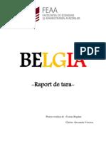 BELGIA-raport de tara
