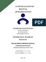DIRECCIÓN DE SALUD PUNO