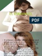 El Embarazo.