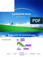 Carbohidratos.pptx