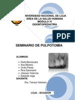 Seminario de Pulpotomia