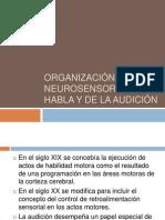 Organizacion Neurosensorial Del Habla y de La Audicion