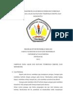 Laporan Praktikum Anatomi Dan Fisiologi Tumbuhan