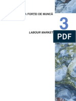 Piata Fortei de Munca din Romania - Cercetare Statistica