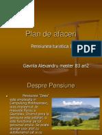 Plan de Afaceri , descriere si prezentare