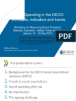Day 1 Session 1 What is social protection and why  is it important? Perspectives from OECD