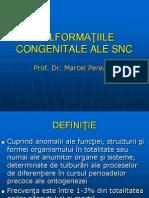 Malforma_iile congenitale