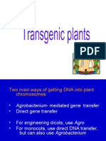 Technique DNA Transfer
