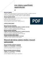 Muscoli Del Dorso (Ok)