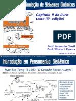 Introdução à Simulação de Sistemas Dinâmicos (2013)