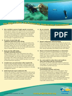Ten Ways a Diver Can Protect the Underwater Environment - English