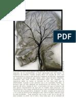 Pachita Curandera Arbol Genealogico