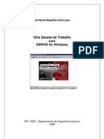 Dfw_textoCompleto.pdf