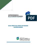 CartillaGuiaPracticaEntidadesSupervisadas2013.pdf